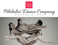 SRJC Dance Program Branding & Marketing