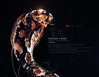 King Cobra · 眼镜王蛇