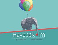 Havacek.im Logo Tasarımı