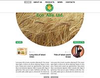Eco Alfa website design
