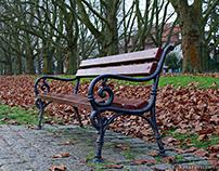 Jesienne ławki/ Autumn benches