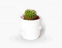 Cactus Landing Page Design Concept ..