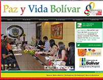 Diseño web Paz y Vida Bolívar