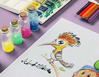Watercolour illustrations + ink