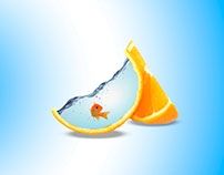 Acuario- Naranja