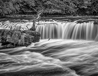 Aysgarth Falls #4 [monochrome]