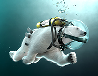 "Polar Bear ""The way of the Future"""