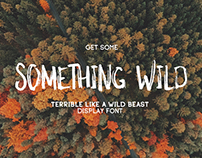 Something Wild - display hand drawn font