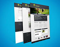 Websites WordPress