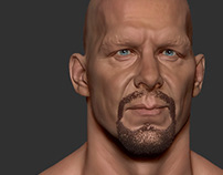 Wrestler Realistic 3D