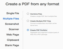 Combining File Types into 1 Adobe PDF Package
