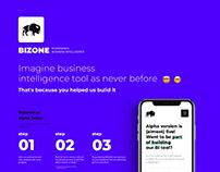 Bizone - Ecommerce Business Intelligence