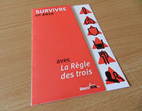 Flyer - Rules of the 3 - Survive 2012