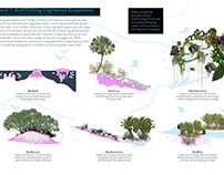 Unplanning Miami: A Sea Level Rise Adaptation Strategy