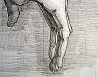 "18""x24"", Untitled Life Drawing, 2011"