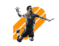 IVVA - Veteran Volleybal identity