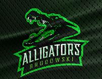 Rebranding Alligators Football Association