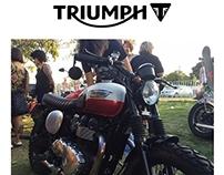 Motorcycle Custom (Triumph)