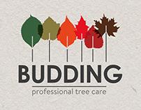 Budding Initial Branding