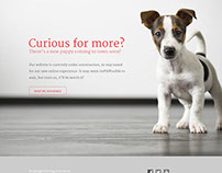 Hugs Pet Products microsite