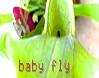PeDRo PRaTeS - baby fly [2015]