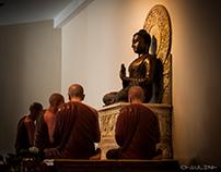 Buddha, Bửu Long, HCM , VietNam