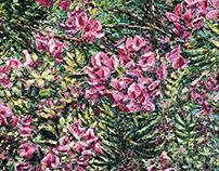 Various Oil Paintings