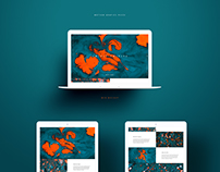 Motion Graphics Website