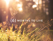 6 Months to Live