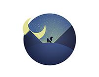 Fox in the night - Illustration