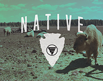 NATIVE BISON