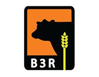 Logo Design: B3R