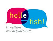 Hello fish!