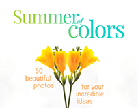 Summer of Colors - 50 high-res photography pack