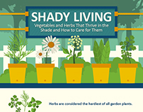 Shady Living | INFOGRAPHIC
