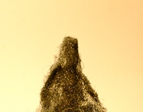 KLAUS . BERENDS . NUMINOSIS - PIETA 2015