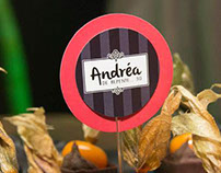 Identidade Visual e Papelaria para festa da Andréa.