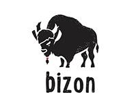 Brand Identity of Bizon