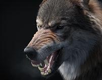 The Mad Wolf (studio render)