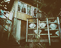 Abandoned house in Lyadi