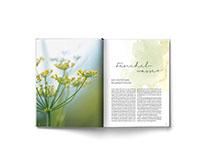 Editorial design – AT Verlag