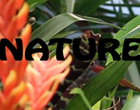 60's Nature Video
