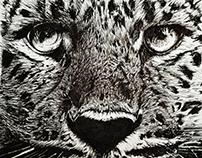 Leopard Pen Drawing