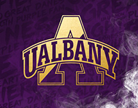 2018-19 UAlbany Campaign