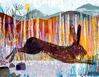 Jill Calder Illustration