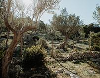 Mallorca | Yogaretreat | bereniceyoga