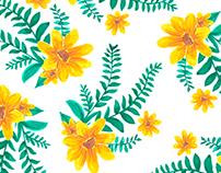 Estampa Floral - Camomila