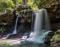 The Falls in Cloudland Canyon State Park