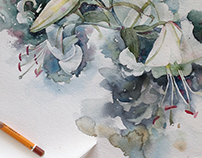 Watercolor sketches of the flowers