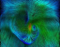 Fluid velocity